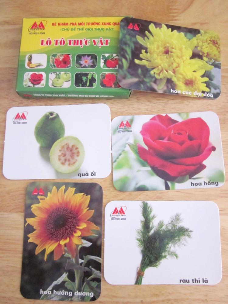 Lô tô thực vật